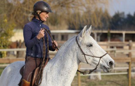 Équitation éthologique - Équitation d'ensemble - Isabelle Peynet