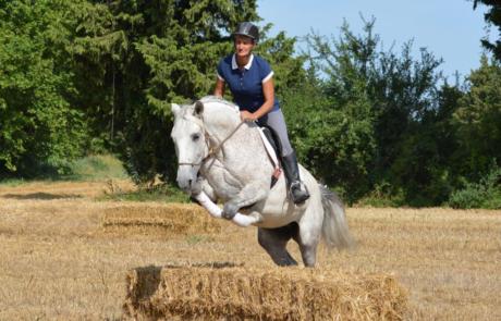 Équitation d'ensemble - Isabelle Peynet