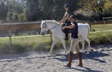 Équitation d'ensemble - École des aides