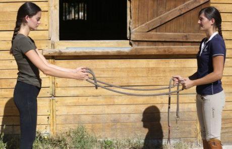 Équitation d'ensemble – Conscience corporelle - Isabelle Peynet